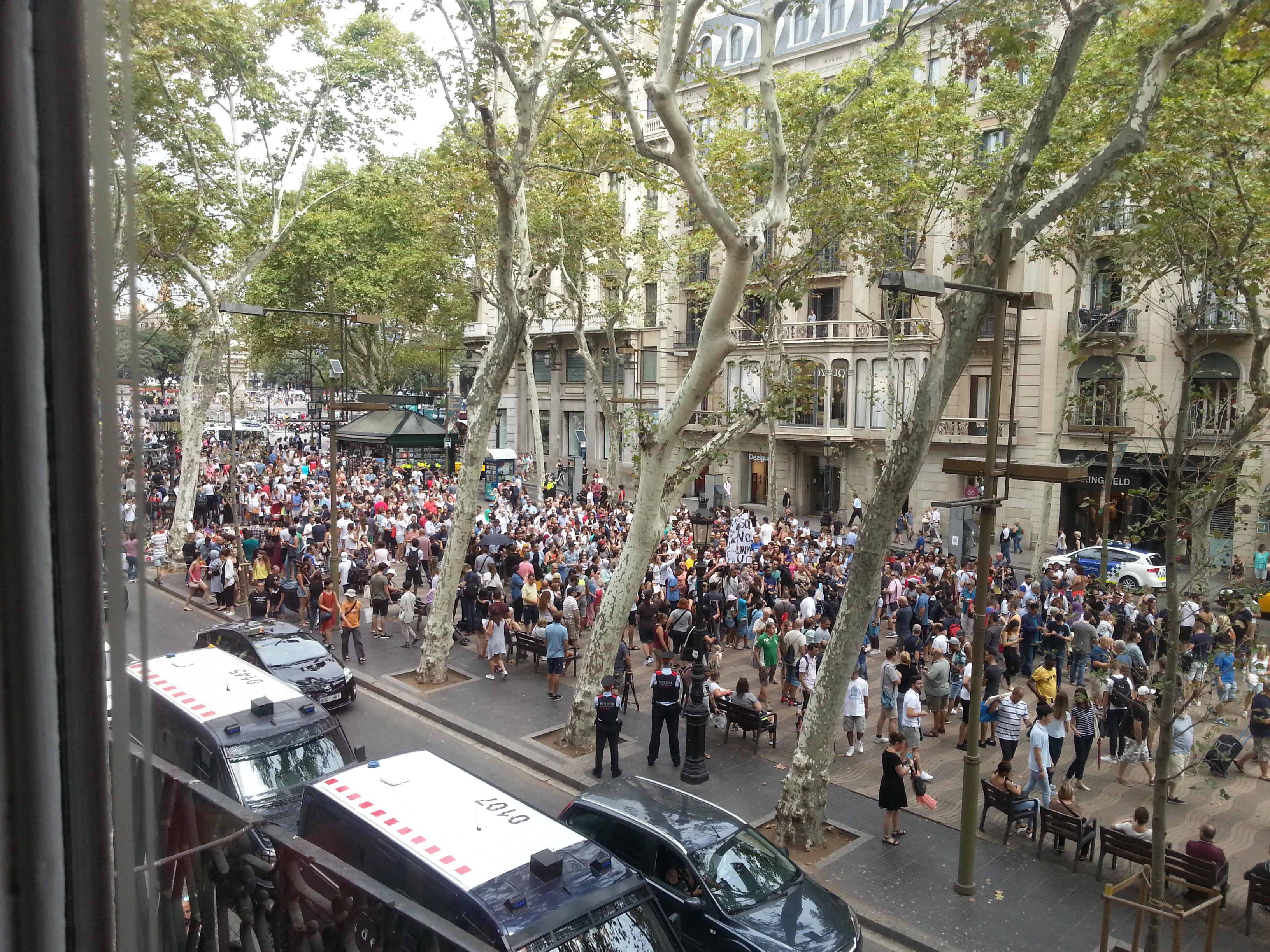La gran manifestació musulmana.